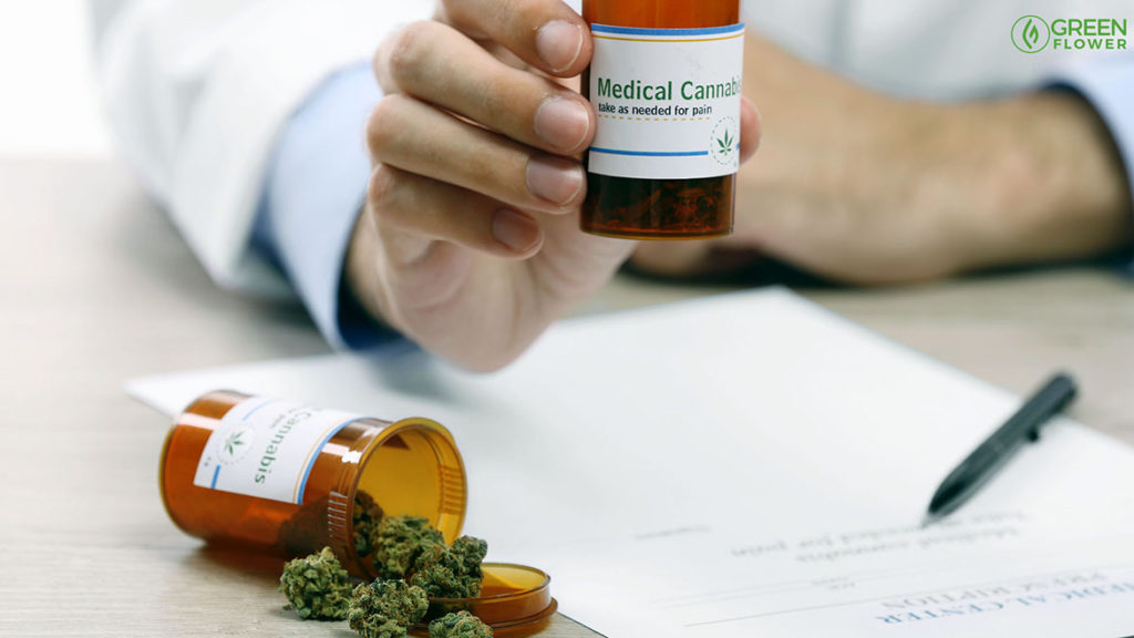 medical cannabis with doctor