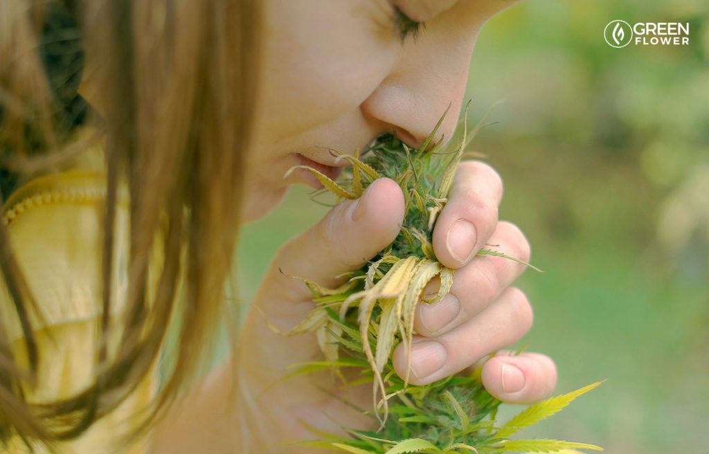 woman smelling a live cannabis flower